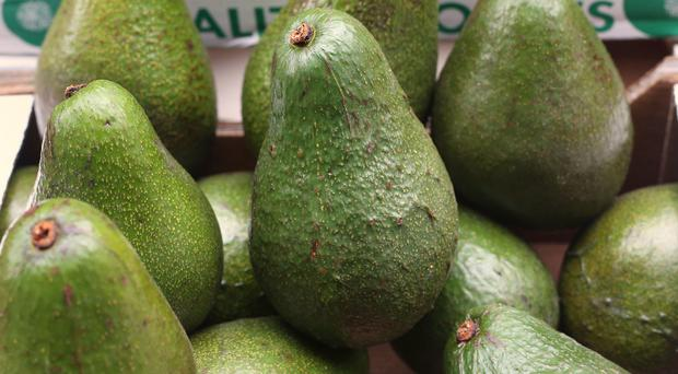 Britons spent nearly £50 million more on avocados in 2016, making it the single fastest-growing food or drink item