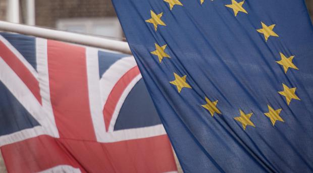 Almost one in three businessmen and women said they are looking to increase exports as a result of the EU referendum