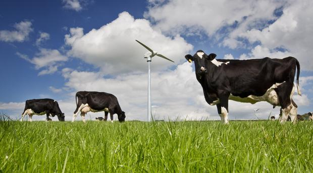Simple Power has new turbines in Down, Antrim, Tyrone and Londonderry