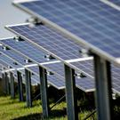 The solar industry has expressed disbelief that the Treasury is about to impose a swingeing business tax on firms with rooftop schemes