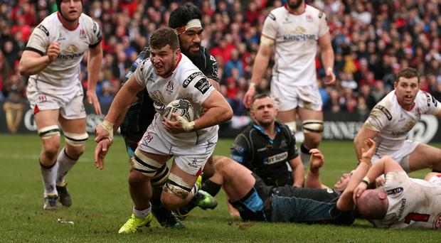 Building materials firm Kingspan sponsors Ulster Rugby