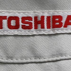 Toshiba Toshiba expected losses to come in at £7 billion as it delayed its annual earnings report (AP)