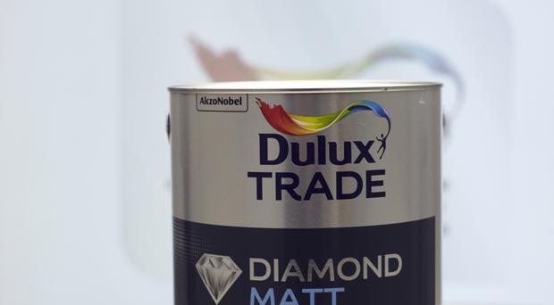 The chairman of Dulux owner AkzoNobel is facing a