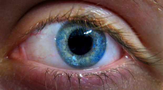 Iris recognition technology is to be used by TSB