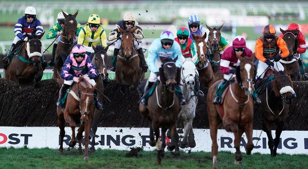 Michael enjoys visits to the Cheltenham races