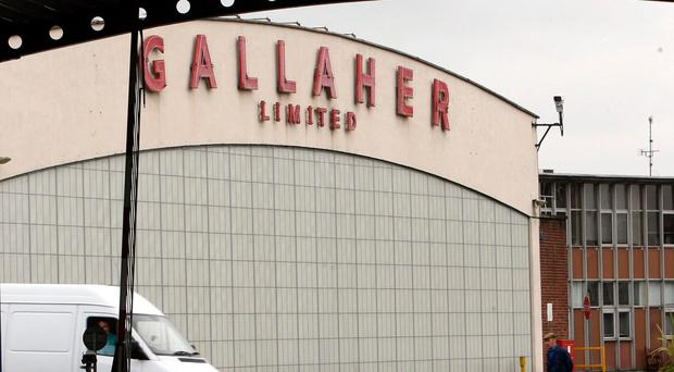 The Gallaher's factory closure contributed to the production sector's fall, but the services sector, including water supply and estate agents, is thriving