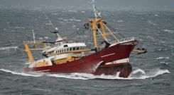 Conservationists have called for more focus on fisheries policy post-Brexit