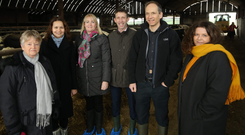 From left: Dr Rosemary Hamilton CBE, NI co-chair, US-Ireland Research and Development Partnership; Dr Irina Tikhonova, School of Pharmacy, QUB; Grainne Lennon, InterTradeIreland; Dr Mark Mooney, Institute for Global Food Security, QUB; Dr David Simpson, Centre for Experimental Medicine, QUB; and Dr Susan Joyce, School of Biochemistry and Cell Biology, University College Cork
