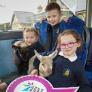 Kate Armstrong, Jude Spence and Chloe Ferris from Ballymacash PS help launch Translink's special bus, coach and train transport plans for the Balmoral Show