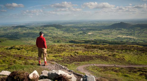 Slieve Gullion Forest Park could host cinema events and concerts