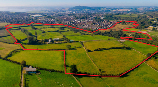 The plot of land for sale in Co Down