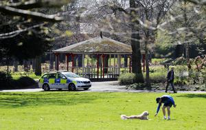 Police patrol Botanic Gardens in Belfast yesterday morning