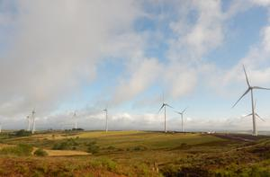 Wind farms are helping Northern Ireland achieve renewable energy targets