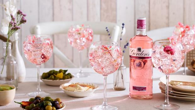 Diageo owns gin brands such as Gordon's and Tanqueray (Diageo/PA)