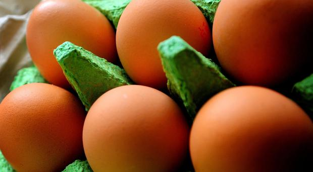 The Food Standards Agency said it was 'very unlikely' that the eggs posed a risk to public health