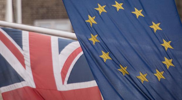 The Association of Chartered Certified Accountants (ACCA) said uncertainty over the UK's exit from the EU was the biggest driver of a fall in business confidence. Nearly 70% said they see no opportunities in Brexit