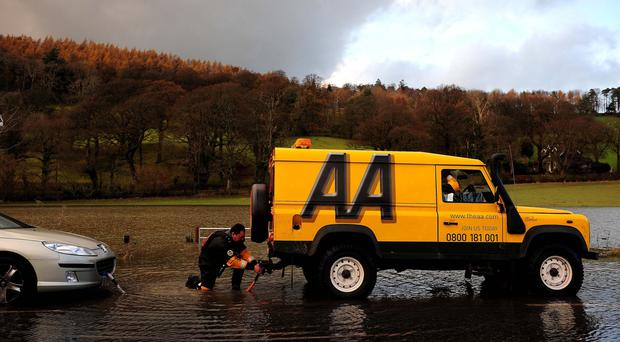 AA warns on profits and cuts dividend