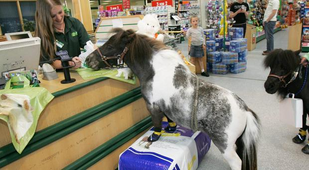 Pets at Home has been expanding its services for shoppers (PA)