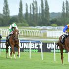 The Frontier British EBF Maiden Stakes at Newbury Racecourse, Newbury. The NEX-listed racecourse reported higher revenues in the first six months of 2019 (PA)