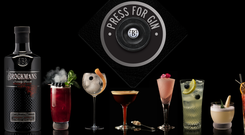 Brockmans Gin has signed up Paul Walsh as an adviser as part of its expansion drive (Brockmans/PA)