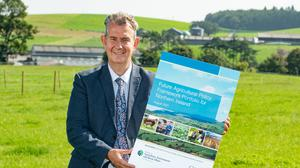 Agriculture Minister Edwin Poots published a Future Agricultural Policy Framework Portfolio for Northern Ireland on August 24.