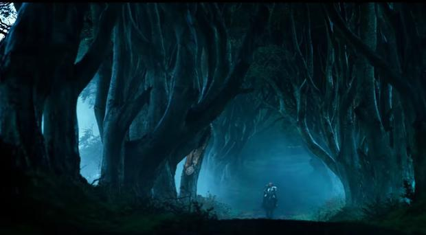 The Dark Hedges near Armoy, Co Antrim feature in the new Transformers film.