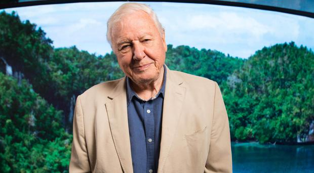 The BBC is planning to introduce a host of new programmes exploring the impact of climate change, with Sir David Attenborough set to front a new documentary (David Parry/PA)