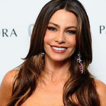 Sofia Vergara might star in a reboot of 1986 film Heat