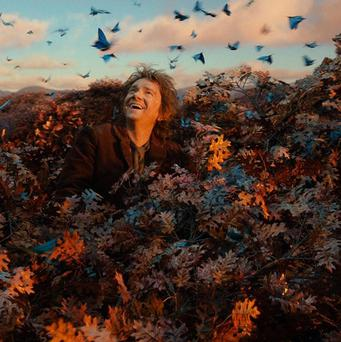 Martin Freeman stars as Bilbo Baggins in The Hobbit: The Desolation Of Smaug