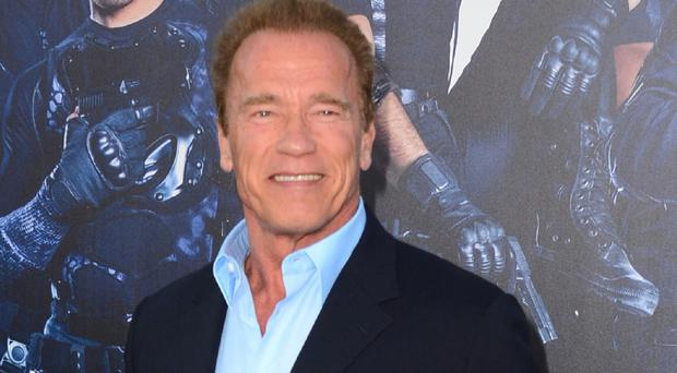 Arnold Schwarzenegger's new film, Maggie, will be shown at this year's Toronto International Film Festival