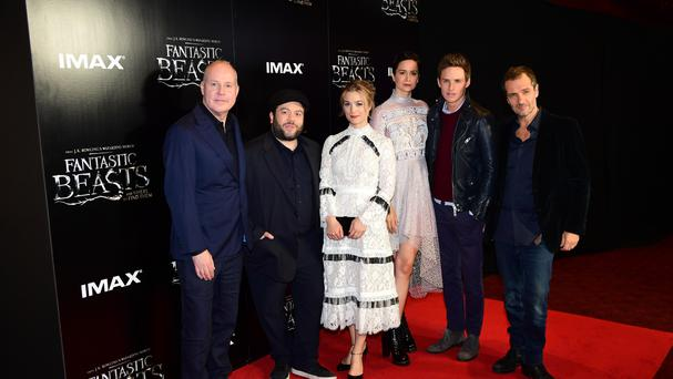 The cast of Fantastic Beasts And Where To Find Them attending a fan event in London