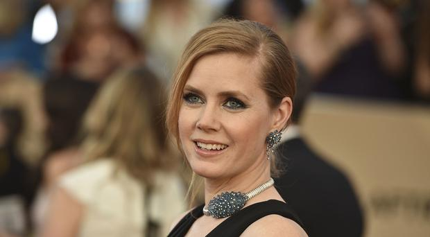Amy Adams was disappointed not to earn an Oscar nomination for Arrival, the film's director said (Jordan Strauss/Invision/AP)