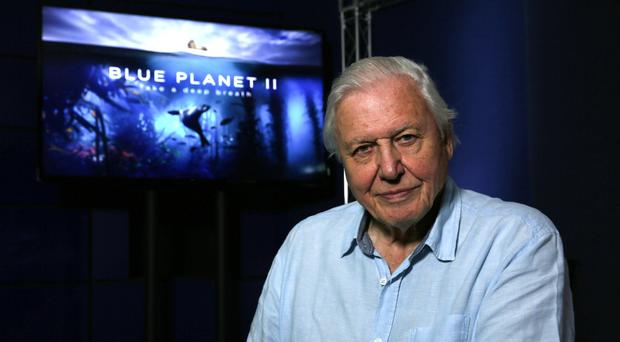 Sir David Attenborough (BBC)