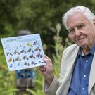 Sir David Attenborough launching a Big Butterfly Count (Butterfly Conservation/PA)
