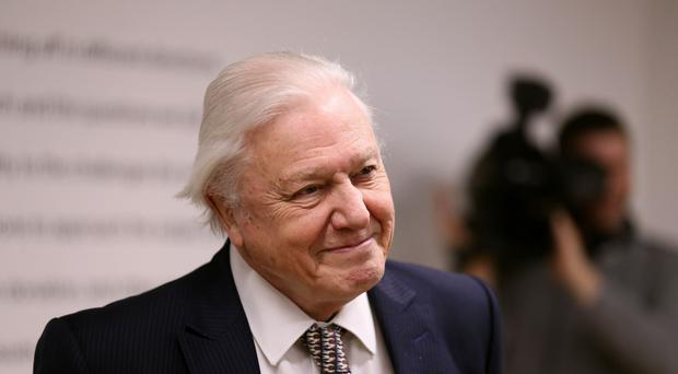 Sir David Attenborough topped the poll (Chris Radburn/PA)