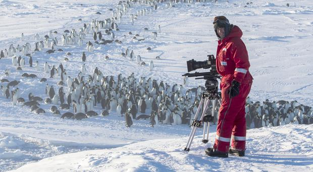 Cameraman Lindsay McCrae filming the Emperor penguin colony, Atka Bay in Antarctica. TV viewers have praised the BBC film crew that came to the rescue of trapped penguins they were filming. (BBC/PA)
