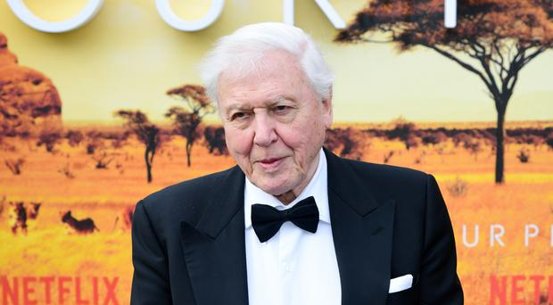 Sir David Attenborough at the premiere of Netflix's Our Planet (Ian West/PA)
