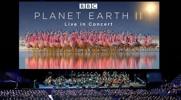 Planet Earth II Live In Concert (Justin Anderson BBC NHU)