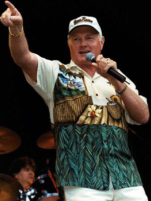 Mike Love has not ruled out the idea of a hologram Beach Boys tour.