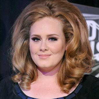 Adele is among the stars who signed Amnesty International's letter supporting Pussy Riot's release