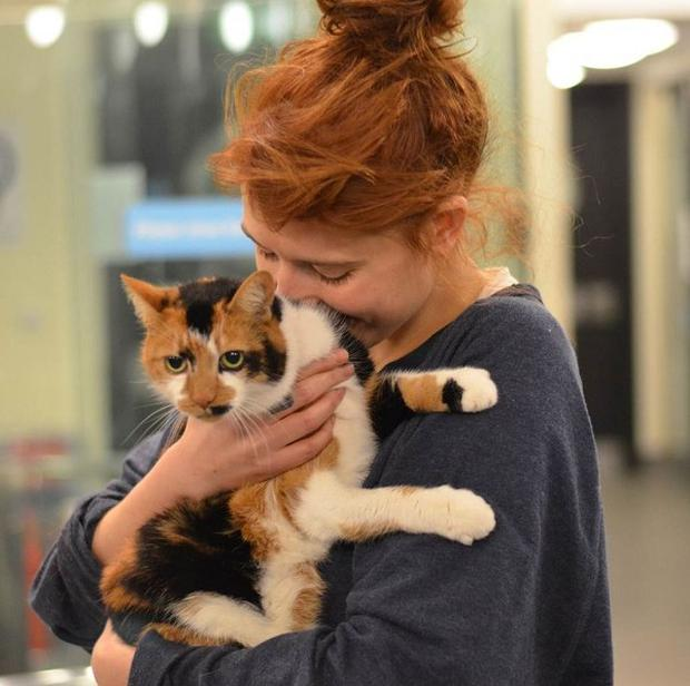 Florence Welch rehoused a cat from Battersea Dogs And Cats home