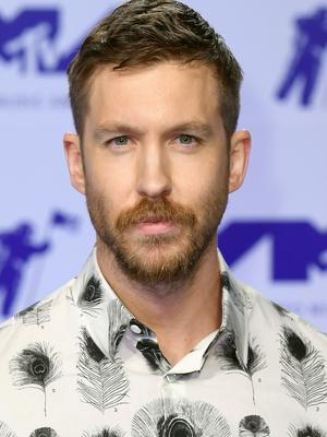 Calvin Harris was reportedly involved in a car crash in Los Angeles (PA)
