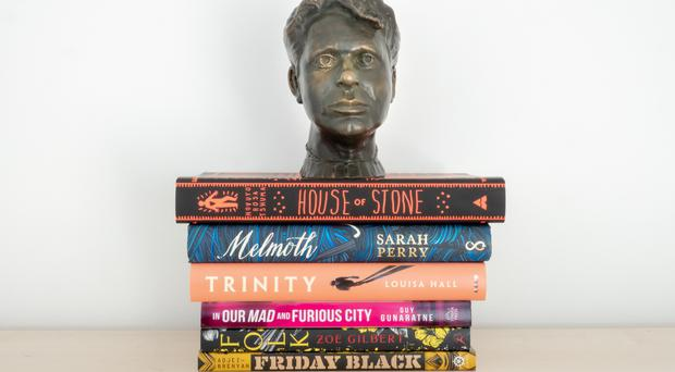 The shortlist for the International Dylan Thomas Prize (The shortlist for the International Dylan Thomas Prize)