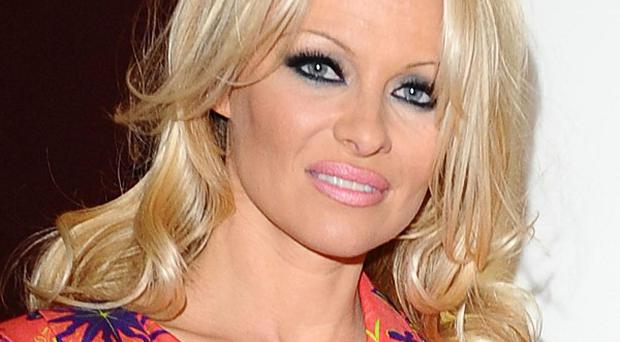 Pamela Anderson hopes to see the end of seal hunts