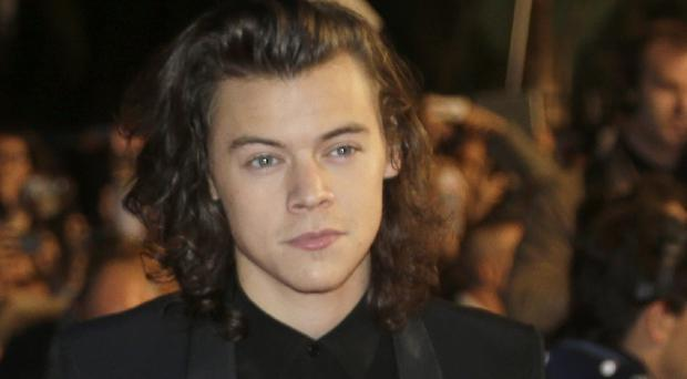 One Direction's Harry Styles has hinted he may have taken naked selfies