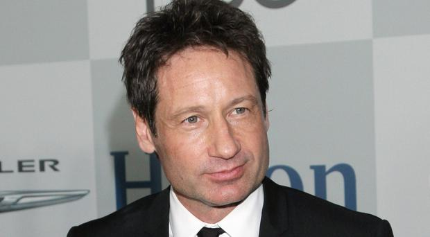 David Duchovny would be interested in reprising his X-Files role