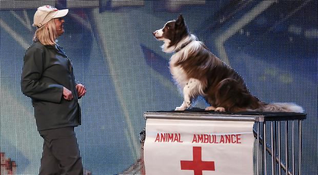 Jules O'Dwyer and Matisse, who won this year's BGT final (PA/SYCO/THAMESTVITV)
