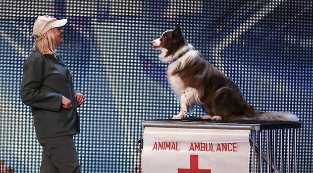 Jules O'Dwyer and Matisse, during the audition stage of Britain's Got Talent (ITV/PA)