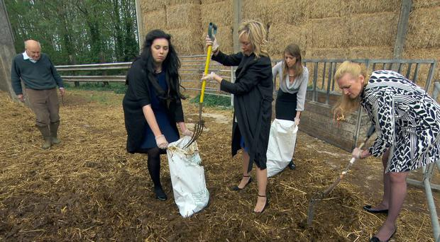 Elle Stevenson, Charleine Wain, Jenny Garbis and Ruth Whiteley shovelling manure on The Apprentice (BBC/PA)