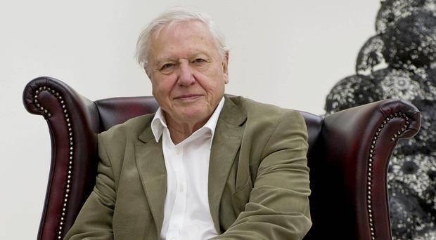 Sir David Attenborough said he backed the right-to-die campaign